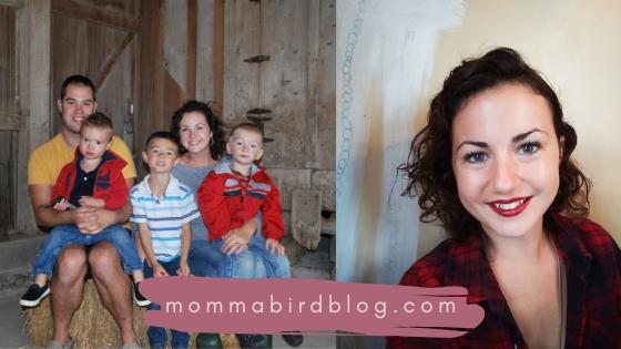 mommabirdblog.com (1)